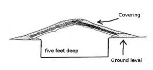 pit house idea